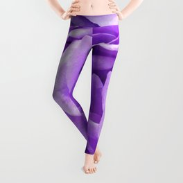 Violet roses Leggings