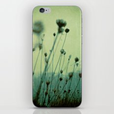 Finding Peace Within iPhone & iPod Skin