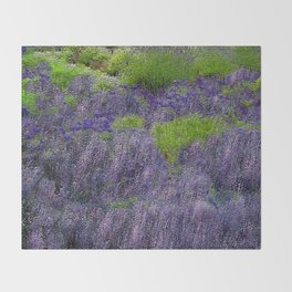 Lavender Fields Throw Blanket