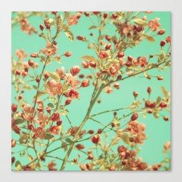 Blossom Wallpaper Canvas Print