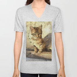 All Cats Are Black In The Dark Unisex V-Neck