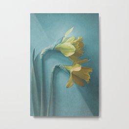 Narcisses Metal Print