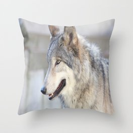 Bright Eyes and Fluffy Coat Throw Pillow