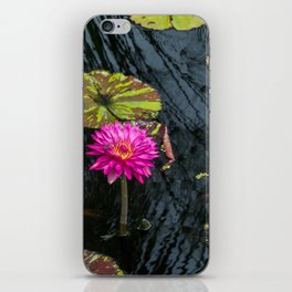 Amazonian Water Lily iPhone Skin