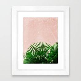 Palm Leaves On Pink Background Framed Art Print