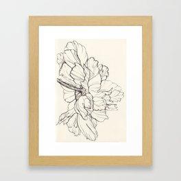 Peony Ink Illustration Framed Art Print