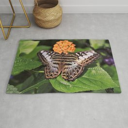 Blue Clipper Butterfly Rug