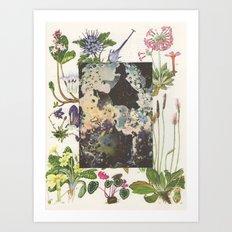 127. Art Print