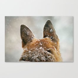 Ears of Distinction Canvas Print