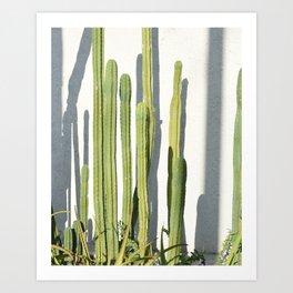 cali cacti Art Print