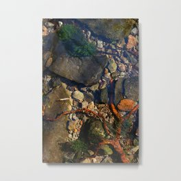 Creeping Fingers Metal Print