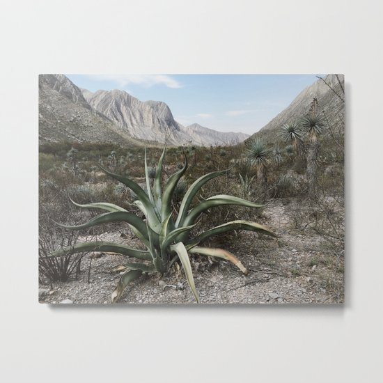 Mexico Century Metal Print