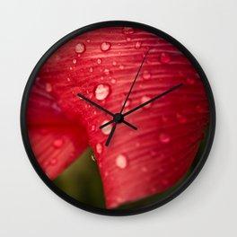 Red Poppy Petal Raindrops Wall Clock