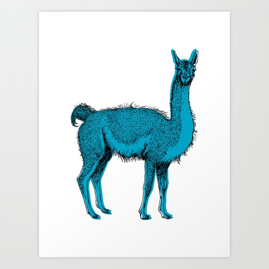 guanaco Art Print