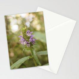 Purple Flowers in Sunrise (Vintage) Stationery Cards