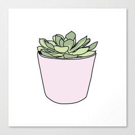 Green suculent in pink flowerpot Canvas Print