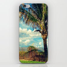 Beach Palm iPhone & iPod Skin