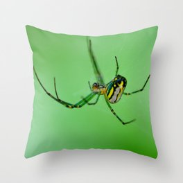 Orchard Spider Throw Pillow