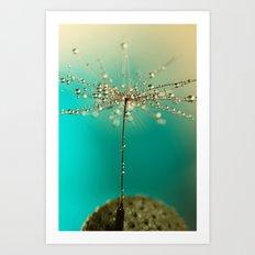 One seed Art Print