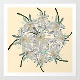 WHITE  NIGHT BLOOMING TROPICAL CEREUS  ON CREAM ART Art Print