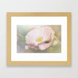 Light pink Flower Framed Art Print