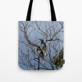 A couple of oriental pied hornbills Tote Bag