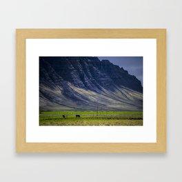 Grazing Horses - Iceland Framed Art Print