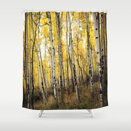 Aspen Trees of Colorado Shower Curtain