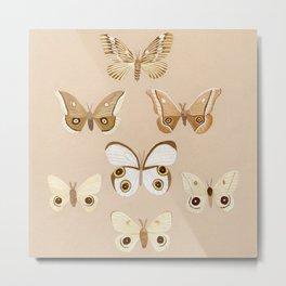 pale moths Metal Print