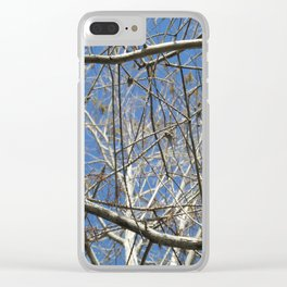 Crisp Cold Florida Morning Clear iPhone Case