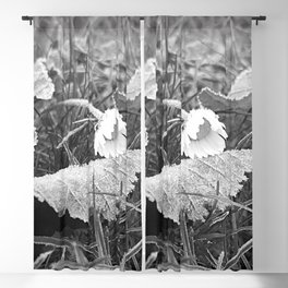 Flora Series - a frosty morning - Blackout Curtain