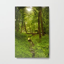 Green Spring Trees Metal Print
