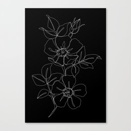 Botanical illustration one line drawing - Rose Black Canvas Print