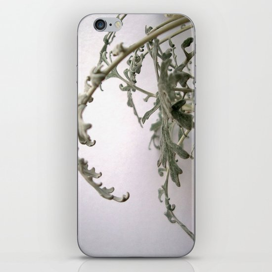 white series (3) iPhone & iPod Skin