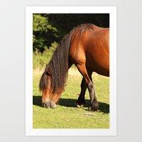 Horse eating Art Print