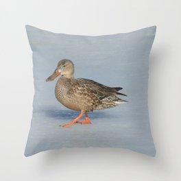 Northern Shoveler Duck Throw Pillow