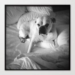 The Good Dog Canvas Print
