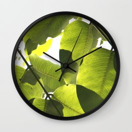 Close Up Leaves Wall Clock