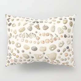 Sea shore Netania Pillow Sham