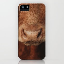 The cow's nose iPhone Case