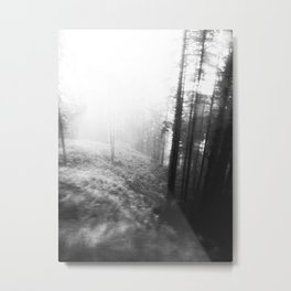 Into the Woods... Metal Print