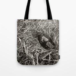 Doorknob in Grass  Tote Bag