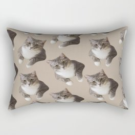 beige tan grey american wirehair cat pattern Rectangular Pillow
