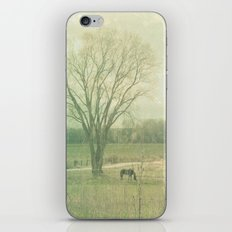 Lazy Days of Summer iPhone & iPod Skin
