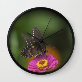 Giant Swallowtail Wall Clock