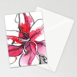 Pink Lily Stationery Cards