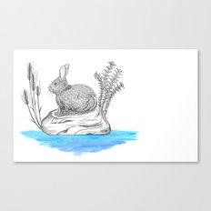 Rabbit in an island Canvas Print