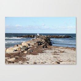 Breakwater at the Baltic beach - Wellenbrecher am Ostseestrand Canvas Print