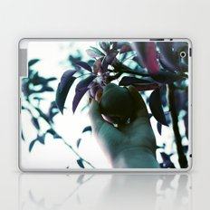 Backyard Pear Laptop & iPad Skin