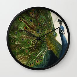 Peacock Feathers Wall Clock